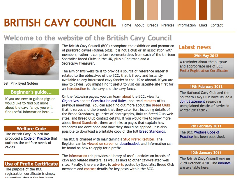Britishcavycouncil