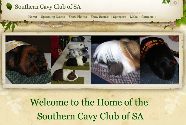Southernclubsa
